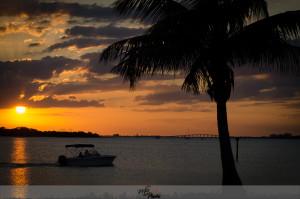 Florida 2014-142
